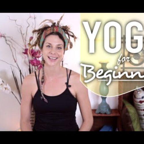 Full Body Stretch Yoga – 15 Minute Beginners Flow For Flexibility & Strength